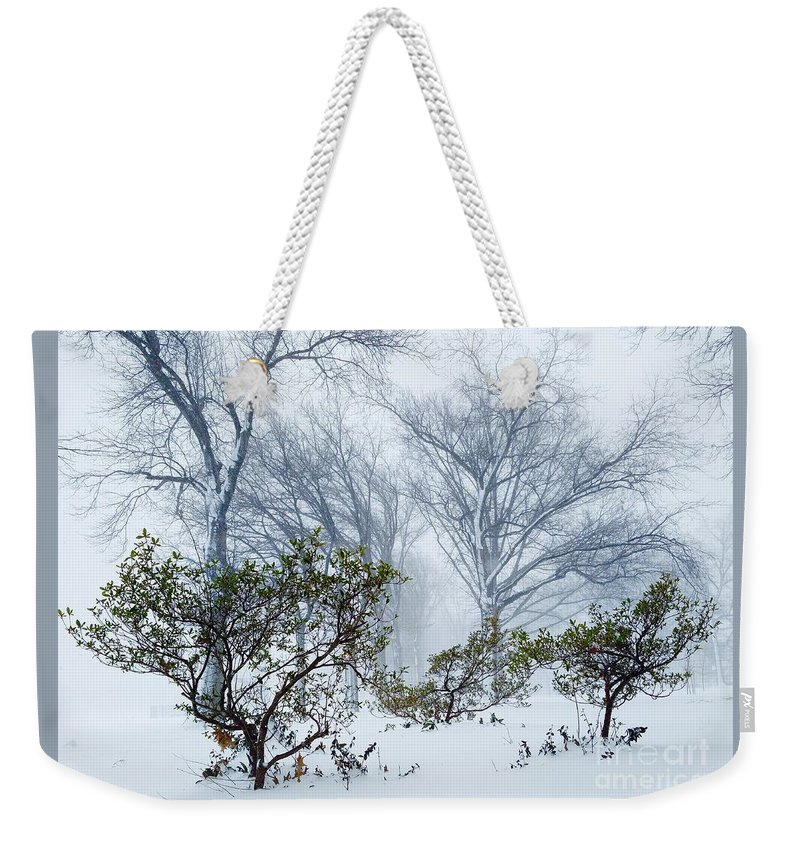 Trees Weekender Tote Bag featuring the photograph My Winter Love by Mioara Andritoiu