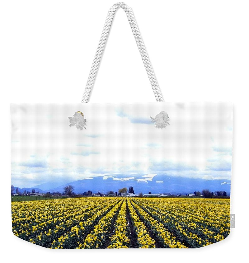 Daffodils Weekender Tote Bag featuring the photograph Myriads Of Daffodils by Will Borden
