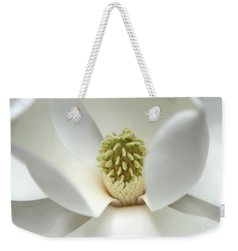 Magnolia Weekender Tote Bag featuring the photograph Mysteriously by Amanda Barcon