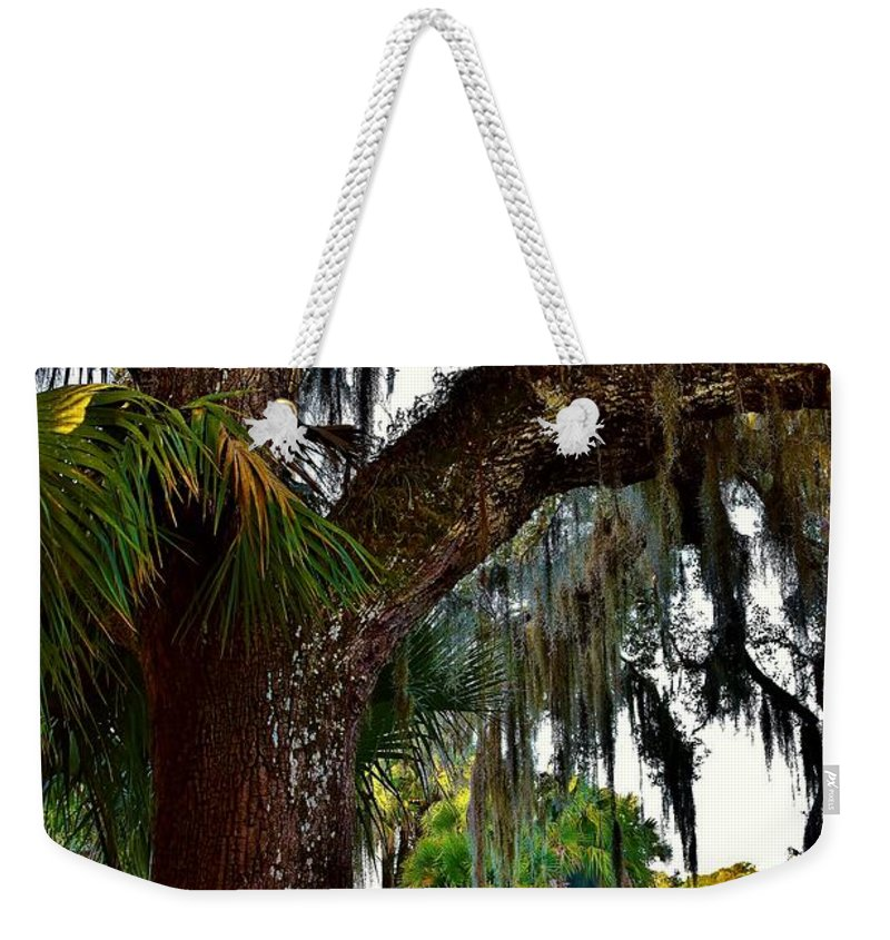 Mystic Weekender Tote Bag featuring the photograph Mystic by Lisa Renee Ludlum