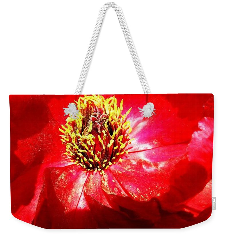 Garden Weekender Tote Bag featuring the photograph Mystical ... by Juergen Weiss