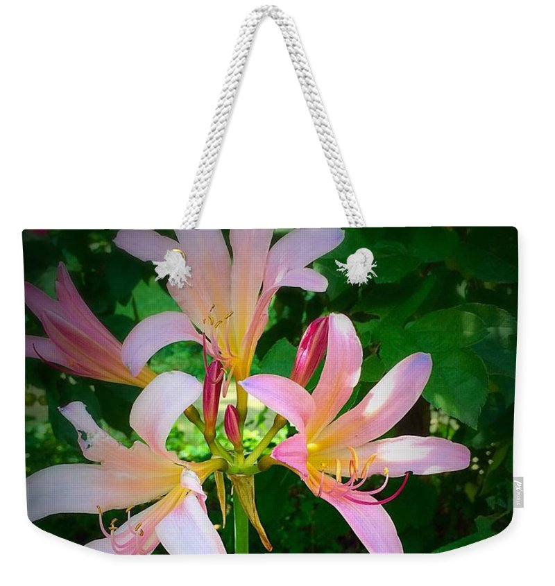Naked Ladies Weekender Tote Bag featuring the photograph Naked Ladies Really by Diane Lindon Coy