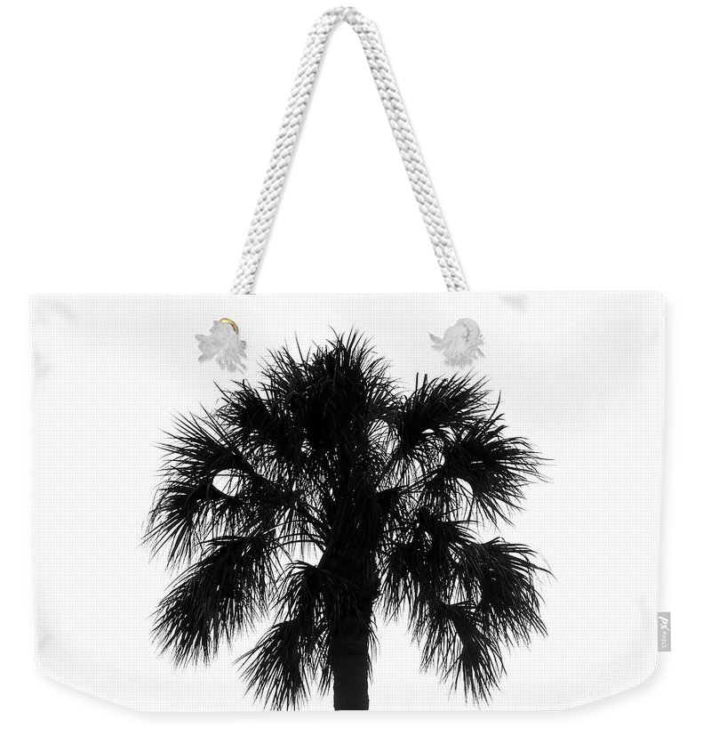 Palm Tree Weekender Tote Bag featuring the photograph Naked Palm by David Lee Thompson