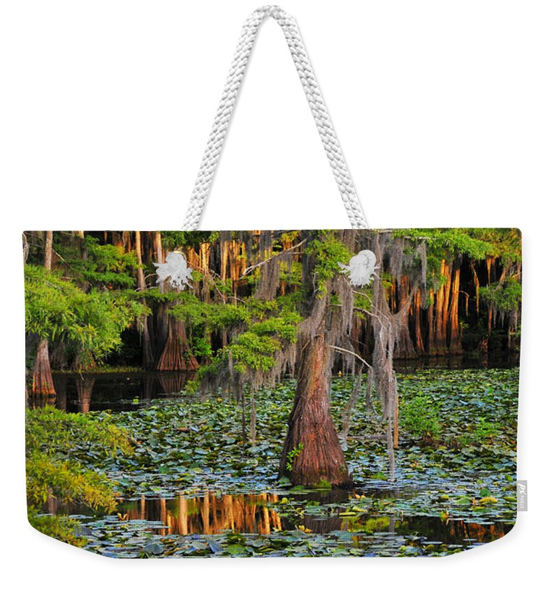 Bog Weekender Tote Bag featuring the photograph Naked by Skip Hunt