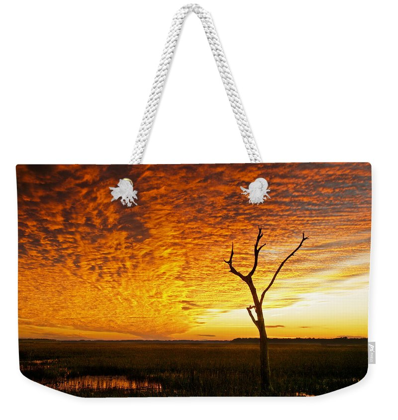 Sunset Weekender Tote Bag featuring the photograph Naked Tree by Phill Doherty