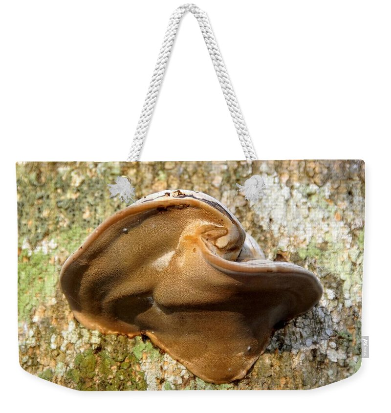 Fungus Weekender Tote Bag featuring the photograph Natural Art by David Lee Thompson