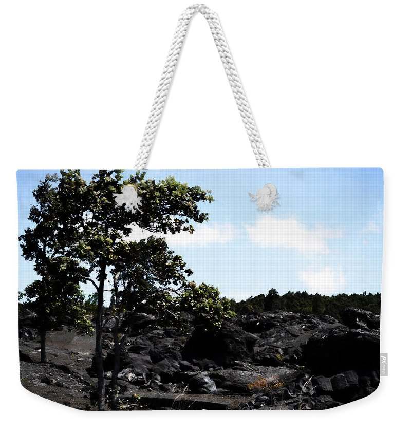 Nature Weekender Tote Bag featuring the photograph Nature 63 by Kristalin Davis