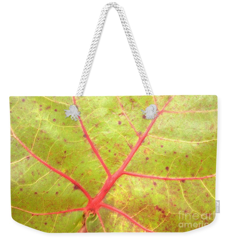 Seagrape Leaf Weekender Tote Bag featuring the photograph Nature Abstract Sea Grape Leaf by Carol Groenen