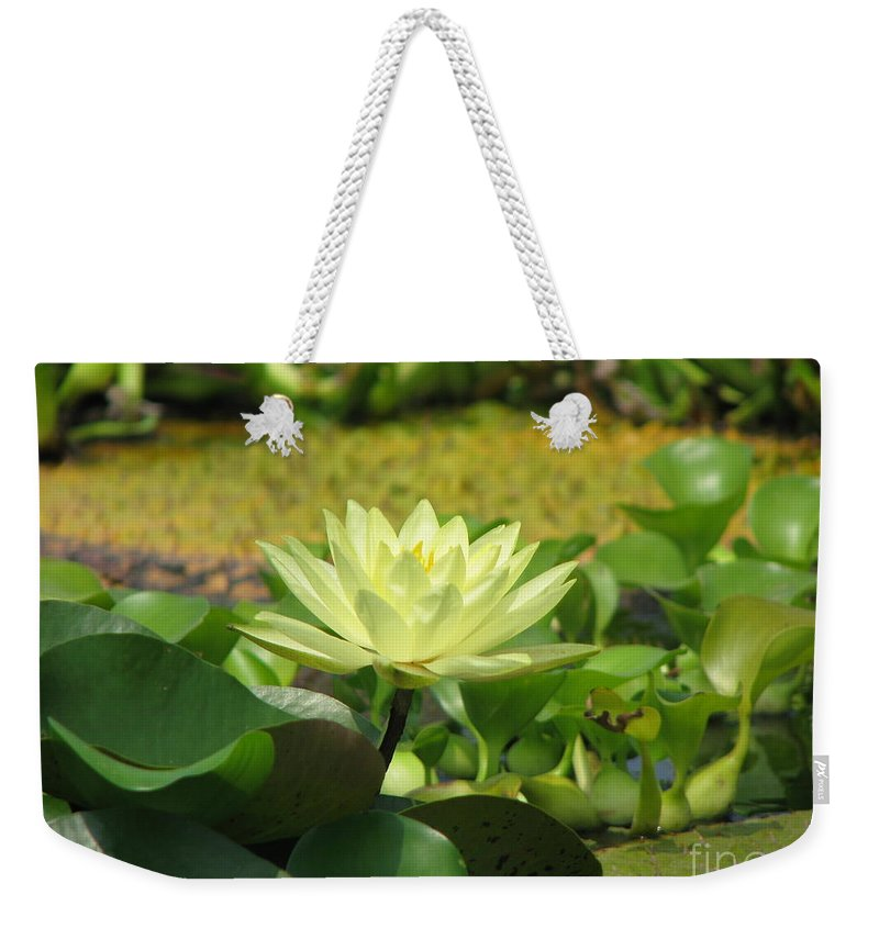 Nature Weekender Tote Bag featuring the photograph Nature by Amanda Barcon