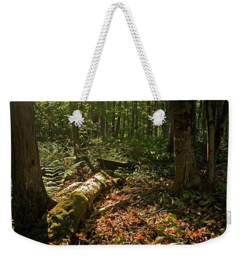 vermont Weekender Tote Bag featuring the photograph Nature At Work by Paul Mangold