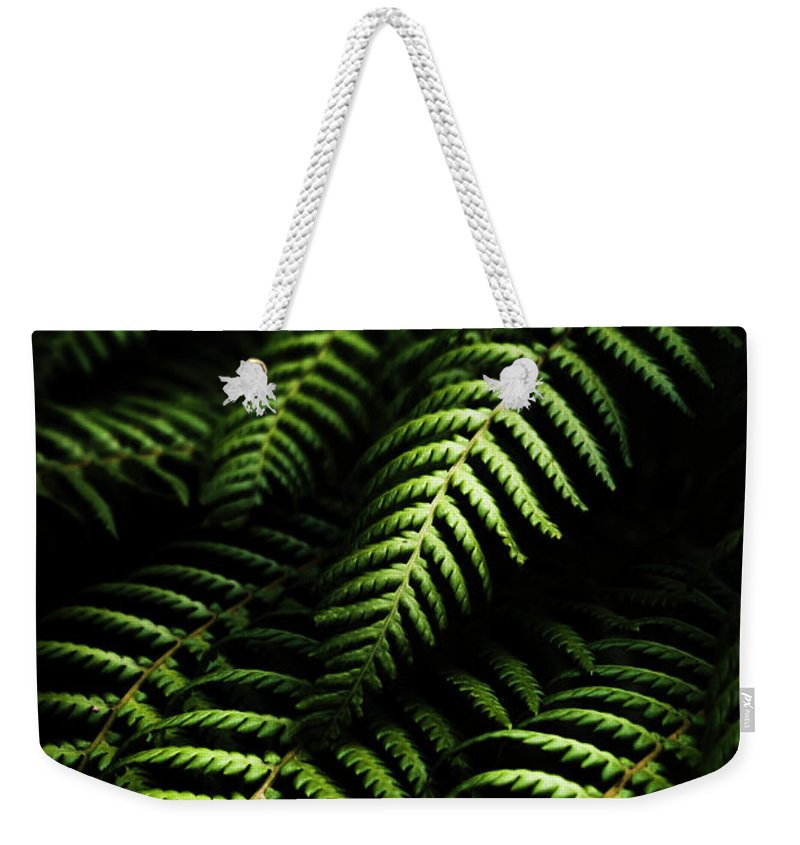 Tropical Weekender Tote Bag featuring the photograph Nature In Minimalism by Jorgo Photography - Wall Art Gallery