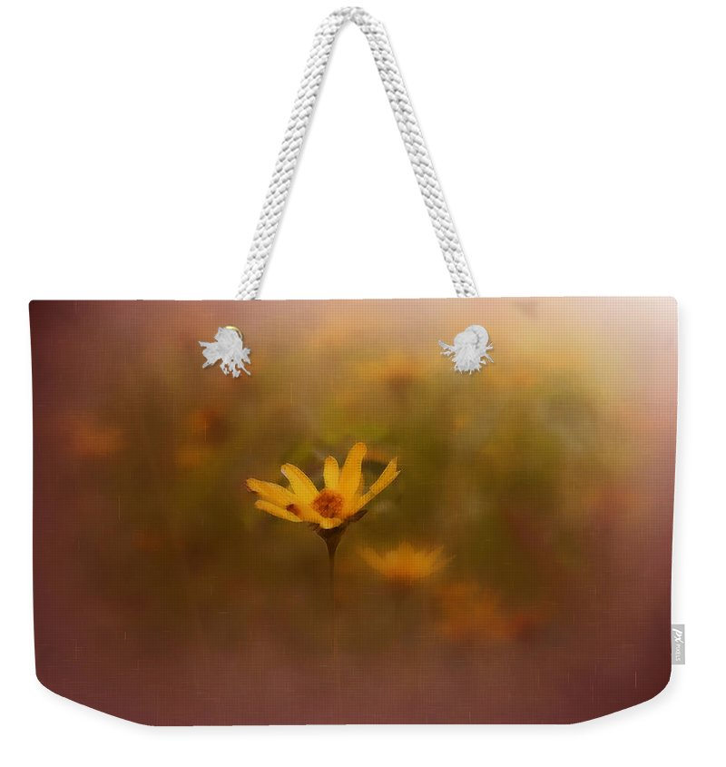 Nature Weekender Tote Bag featuring the photograph Nature by Linda Sannuti