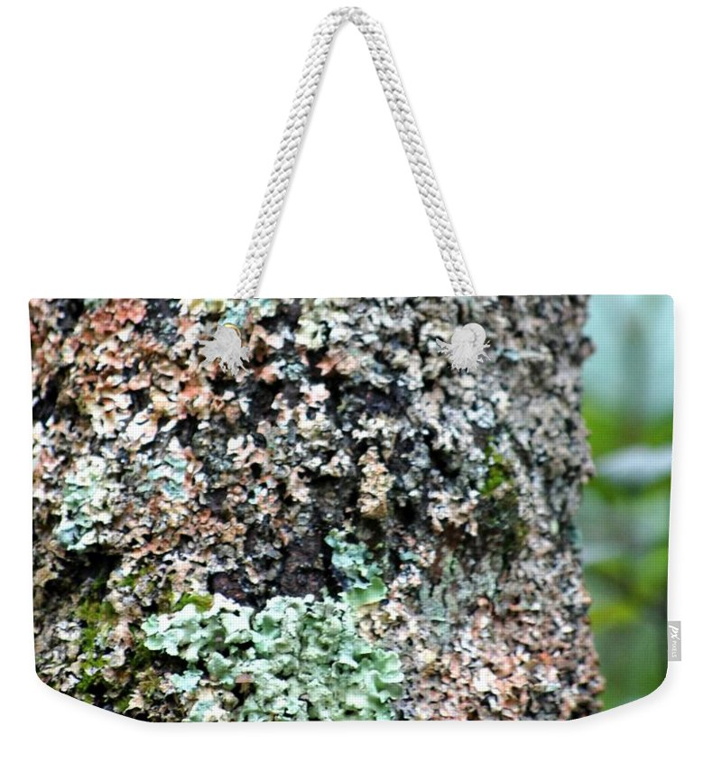 Digital Photograph Weekender Tote Bag featuring the photograph Nature Painted Tree Bark by David Lane