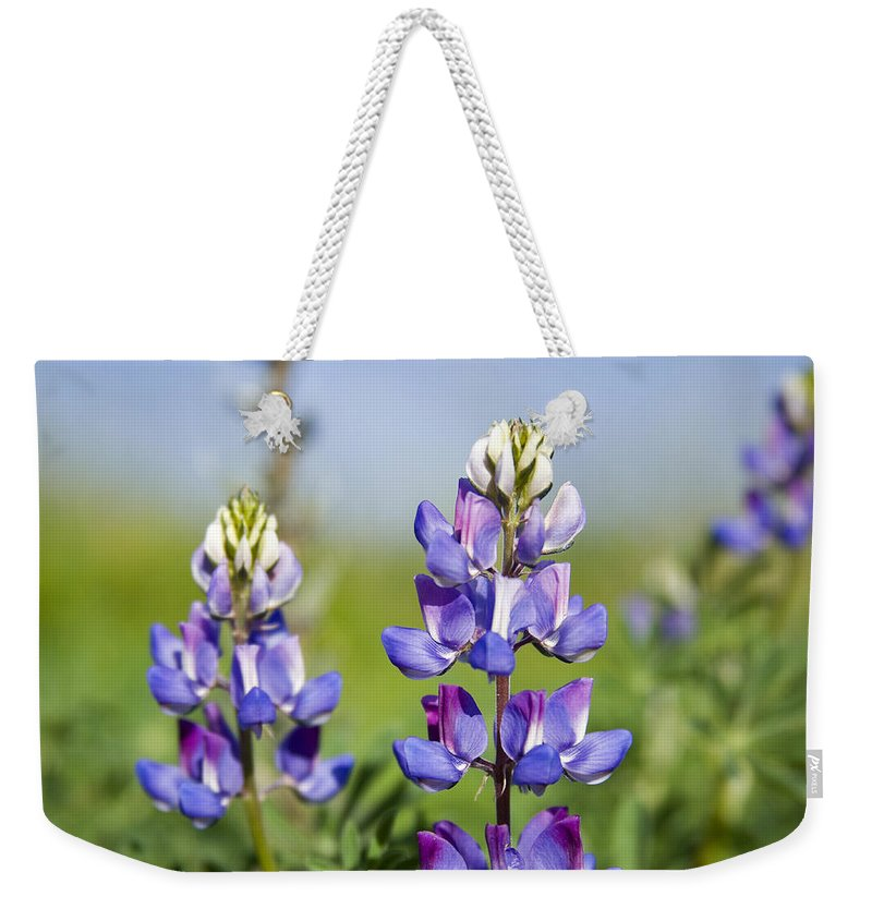 Flowers Weekender Tote Bag featuring the photograph Natures Candy by Kelley King