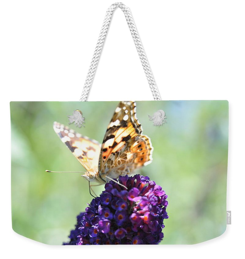 Butterfly Weekender Tote Bag featuring the photograph Nature's Candy Shop by Eduard Meinema