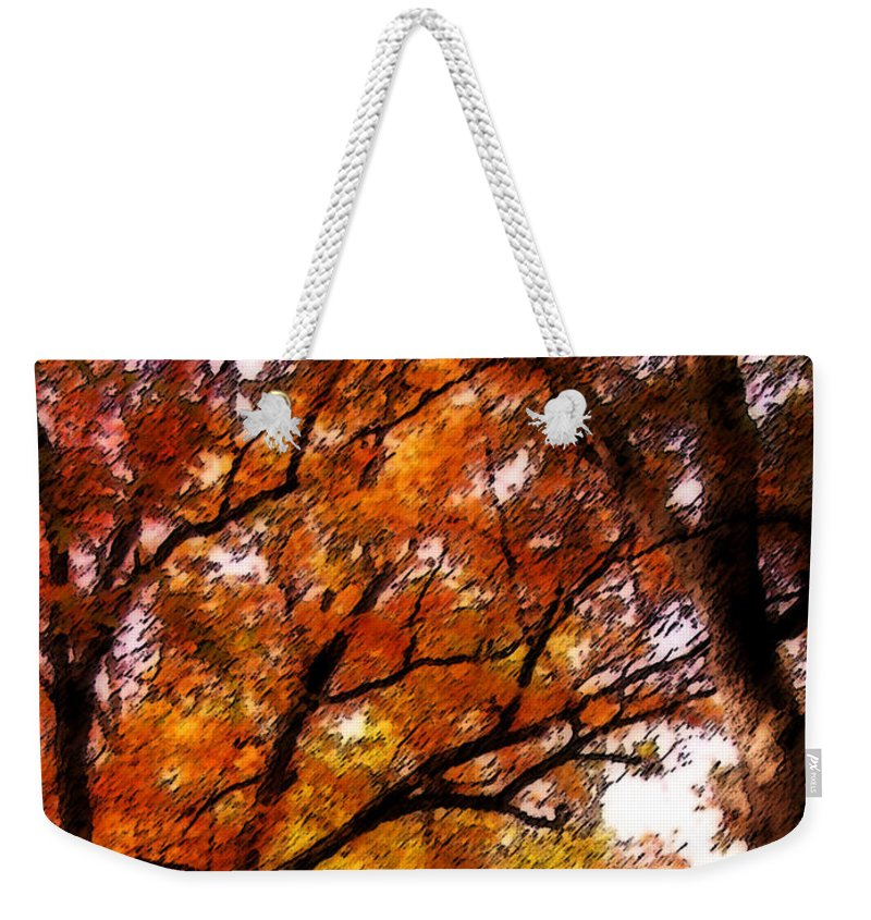 Botanical Weekender Tote Bag featuring the photograph Nature's Canopy by Michelle Hastings