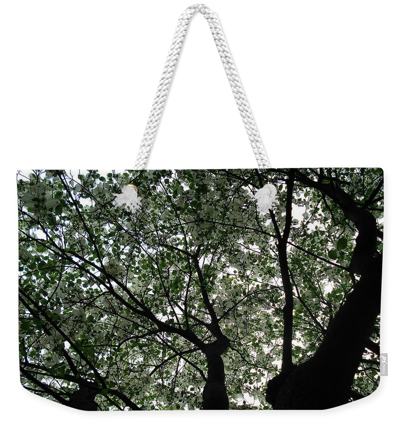 Flowers Weekender Tote Bag featuring the photograph Nature's Cathedral 2 by Nelson F Martinez