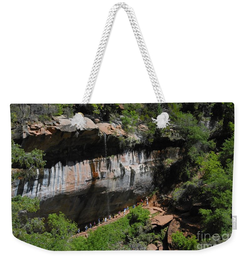 Photography Weekender Tote Bag featuring the photograph Natures Classroom by David Lee Thompson