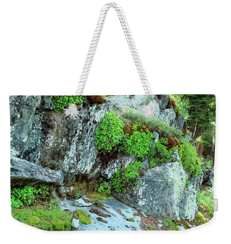 Nature Weekender Tote Bag featuring the photograph Nature's Collage by Donna Blackhall