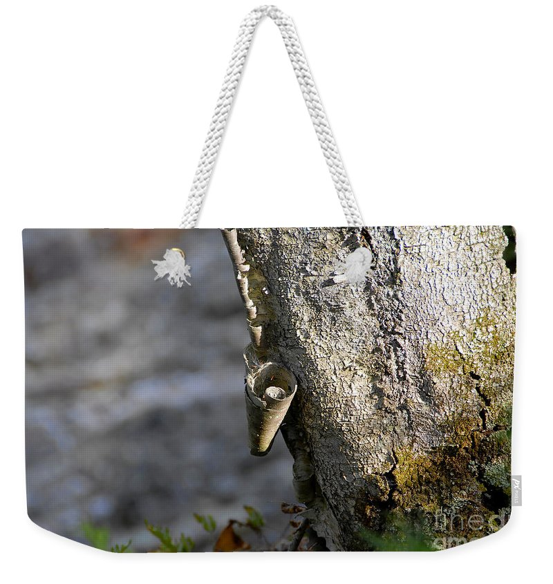 Wood Weekender Tote Bag featuring the photograph Nature's Detail by David Lee Thompson