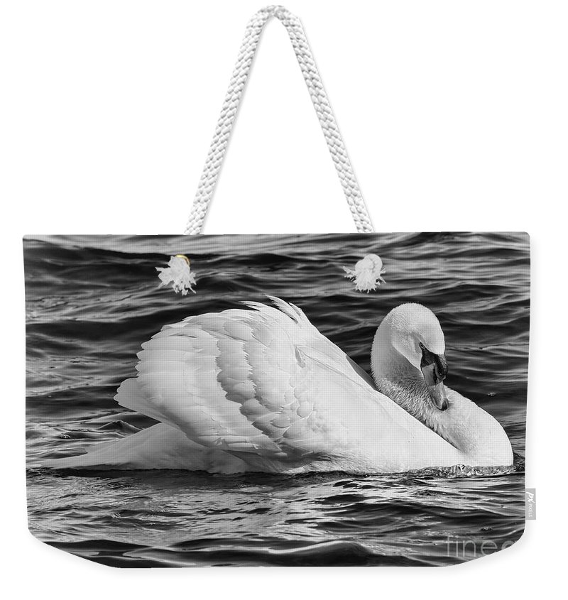 Mute Swan Weekender Tote Bag featuring the photograph Nature's Elegance by Enrico Forlini