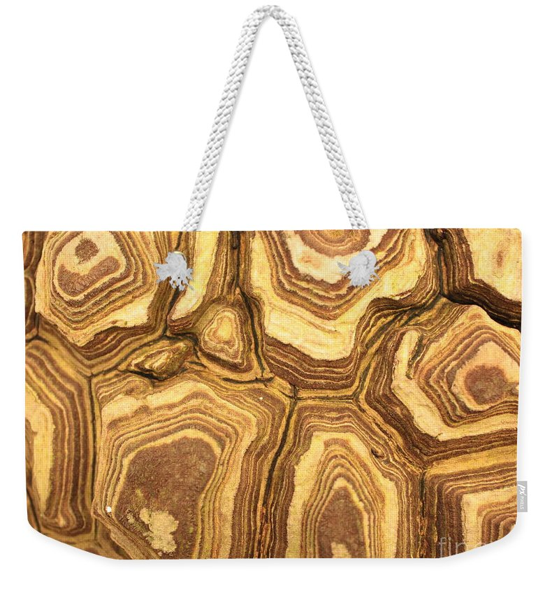 Nature Weekender Tote Bag featuring the photograph Nature's Interesting Patterns by Carol Groenen