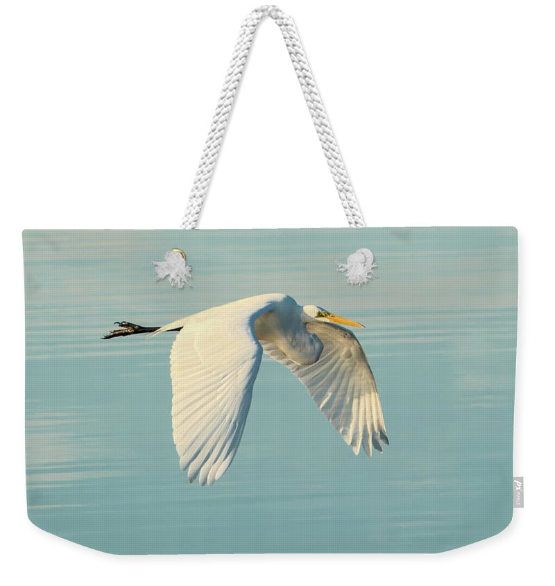 Bird Weekender Tote Bag featuring the photograph Nature's Mirror by Artful Imagery