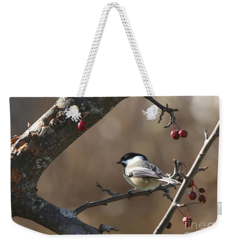 Bird Weekender Tote Bag featuring the photograph Natures Small Wonders by Deborah Benoit