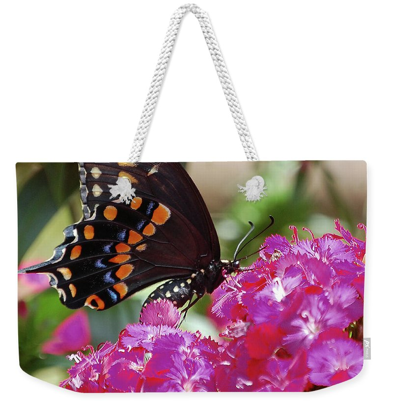 Butterfly Weekender Tote Bag featuring the digital art Nectar Of Pink Passion by DigiArt Diaries by Vicky B Fuller