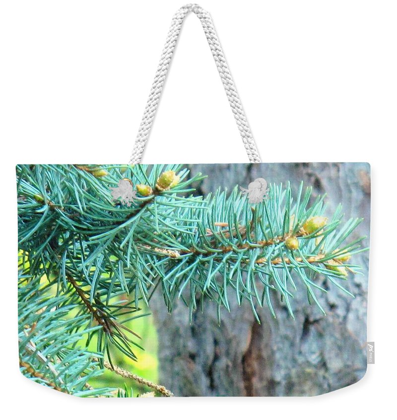 Pine Weekender Tote Bag featuring the photograph Needles by Ian MacDonald