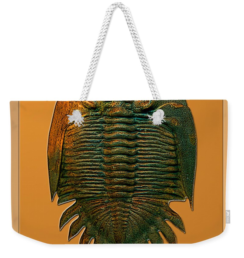 Trilobite Fossil Ancient Colorful Exotic Paleontology Marine Prehistoric Unique Cool Awesome Weekender Tote Bag featuring the photograph Neometacanthus Fossil Trilobite by Melissa A Benson