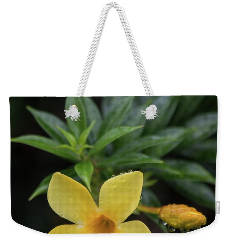 Bunga Jepun Weekender Tote Bag featuring the photograph Nerium Oleander In The Rain by Teresa Wilson