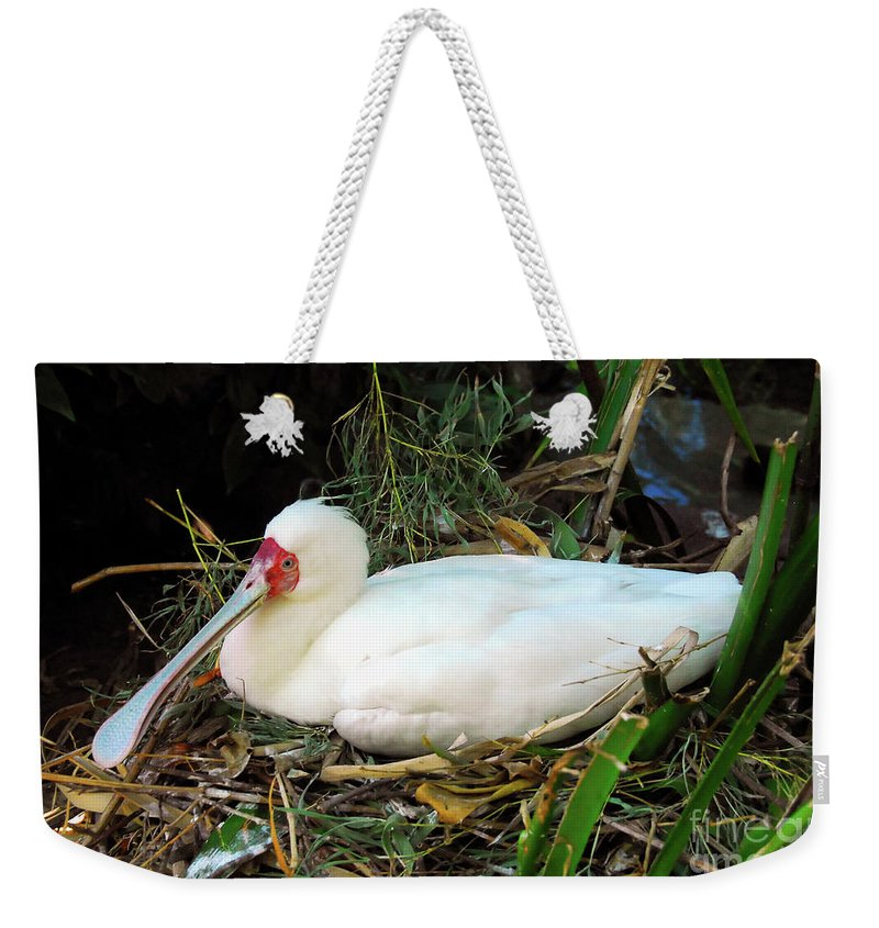 Photography Weekender Tote Bag featuring the photograph Nesting Spoonbill by David Lee Thompson