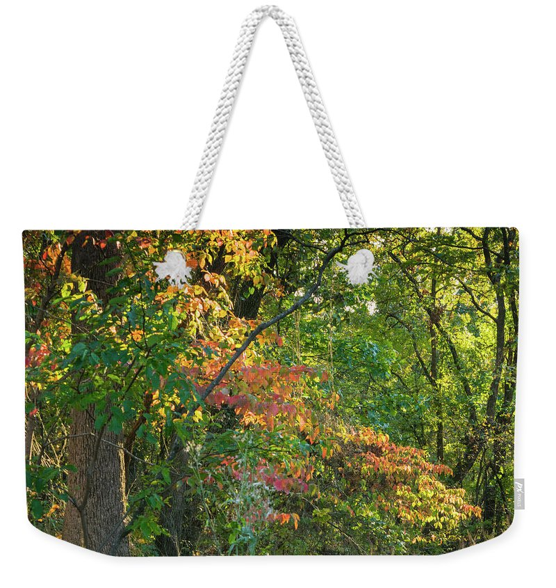 2017 Weekender Tote Bag featuring the photograph Nestled In The Woods by My Angle On It Photography