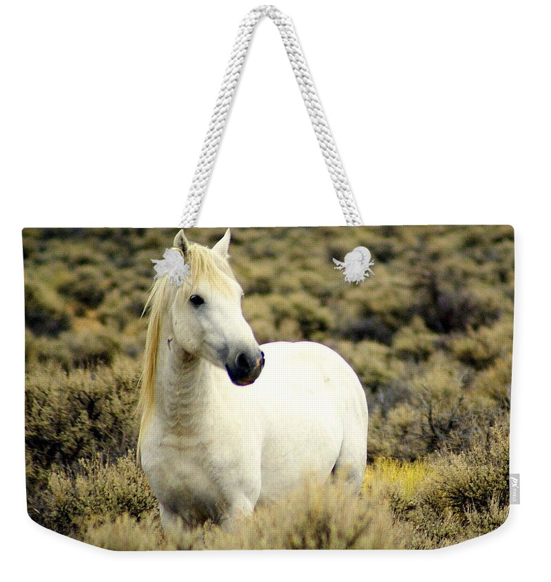 Horses Weekender Tote Bag featuring the photograph Nevada Wild Horses 3 by Marty Koch