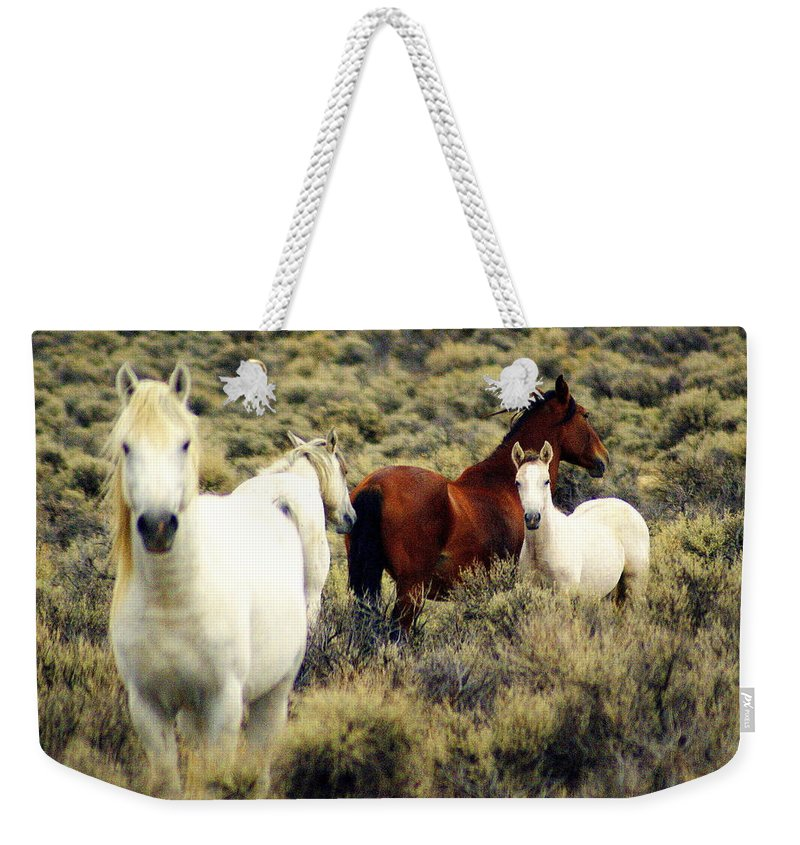 Horses Weekender Tote Bag featuring the photograph Nevada Wild Horses by Marty Koch