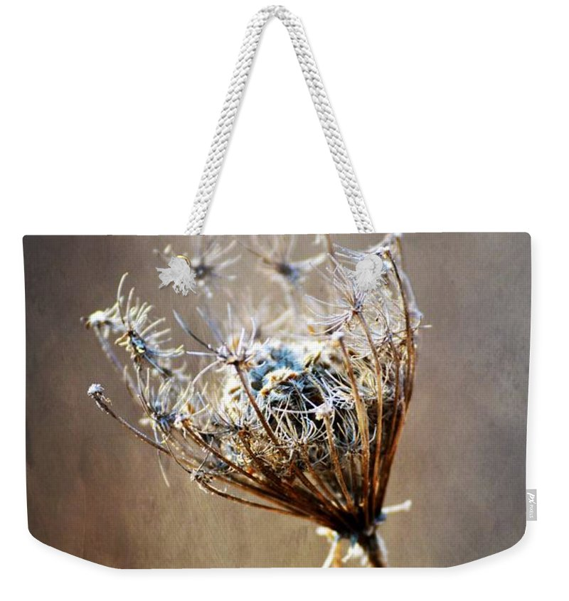 Nature Weekender Tote Bag featuring the photograph Never Weary by Shelley Smith