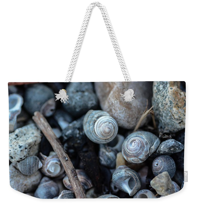 New England Weekender Tote Bag featuring the photograph New England Beach Shells by Nicole Freedman