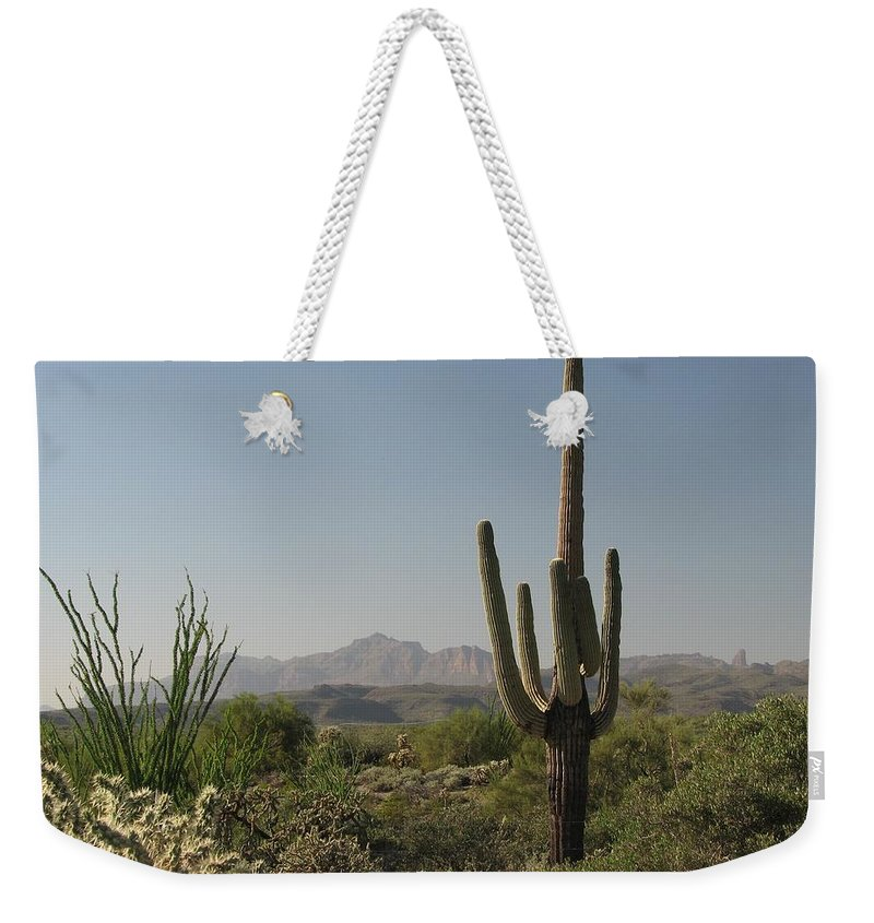 Cactus Weekender Tote Bag featuring the photograph New Mexican Desert by Mary Ellen Mueller Legault
