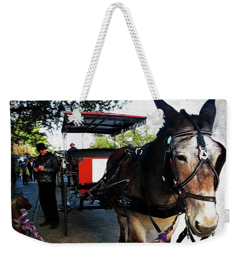 New Orleans Weekender Tote Bag featuring the digital art New Orleans Carriage Ride by Joan Minchak