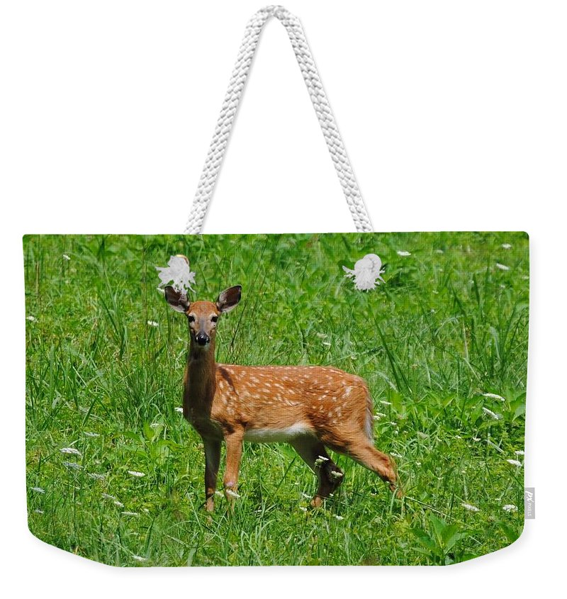 Fawn Weekender Tote Bag featuring the photograph New Spots by Eric Liller