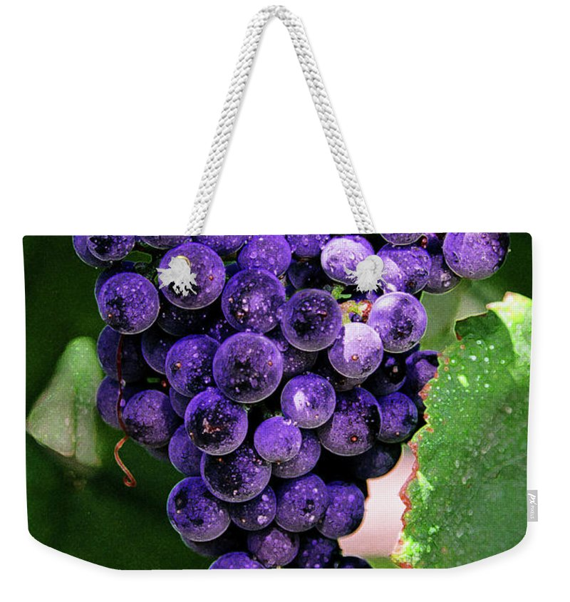 Grapes Art Weekender Tote Bag featuring the painting New Wine by Constance Woods