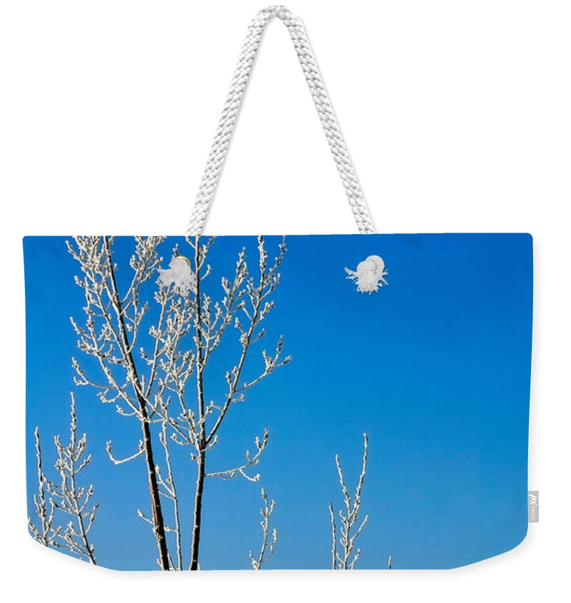 Season Weekender Tote Bag featuring the photograph New Year Wish by Jerry Sodorff