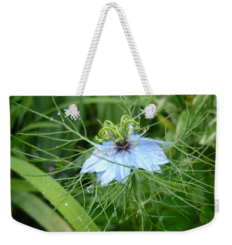 Flower Weekender Tote Bag featuring the photograph Nigella In Spring Rain by Susan Baker