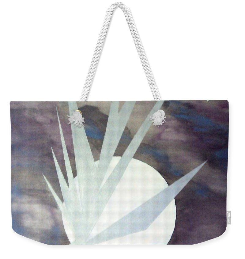 Moon With Hawke And Diamond Stars Weekender Tote Bag featuring the painting Night Hawke 2 by J R Seymour