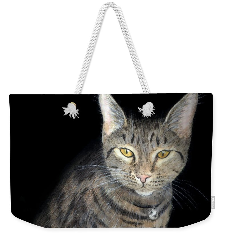 Cat Weekender Tote Bag featuring the painting Night Vision by Lynn Quinn