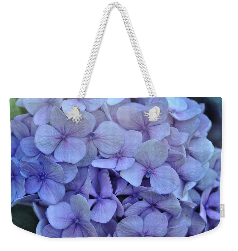 Cape Cod Weekender Tote Bag featuring the photograph Nikko Blue Petals by JAMART Photography