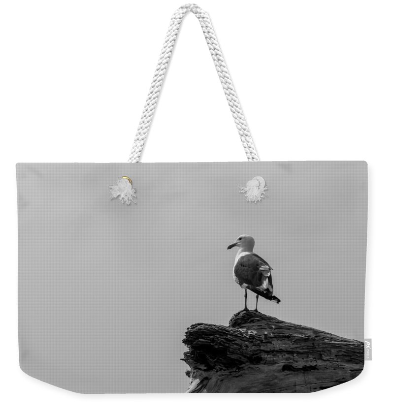 Emma Wood Weekender Tote Bag featuring the photograph Gull On Driftwood Bw by Patti Deters