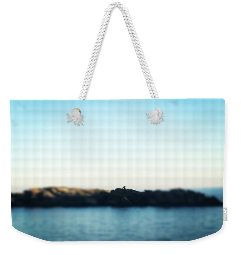 Goat Weekender Tote Bag featuring the photograph No Man Is An Island by Lauren Tischendorf