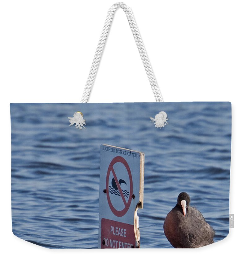 Joke Weekender Tote Bag featuring the photograph No Swimming by Bob Kemp